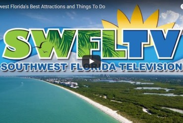 Southwest Florida Best Attractions and Things To Do