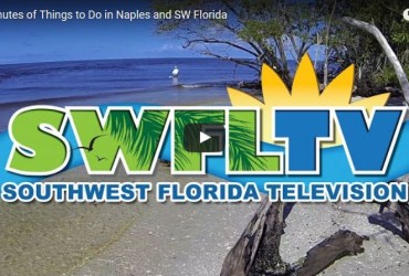 Things to Do in Naples and SW Florida